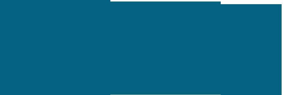 Firma WIT